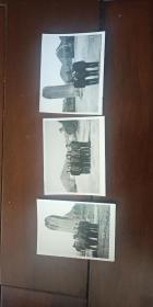 老照片 好太王碑  前 教授合影 三张合售