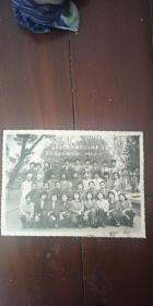 老照片 吉林医学院80级实习队四平一医院全体师生合影留念 1985.5.17