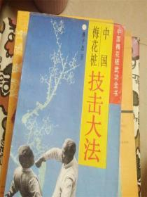 中国梅花桩技击大法