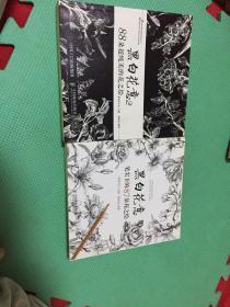 黑白花意 笔尖下的87朵花之绘+ 黑白花意2 88朵超纯美的花之绘