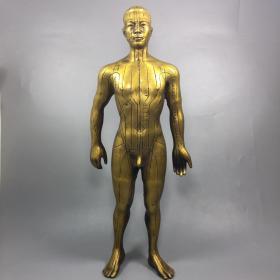 针灸穴位铜人