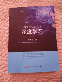 深度学习(上)