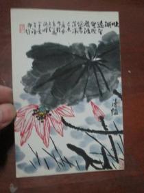 荣宝斋出版的美术明信片《李苦禅花鸟画》清艳一张