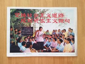 坚持社会主义道路,反对资本主义倾向(8开)