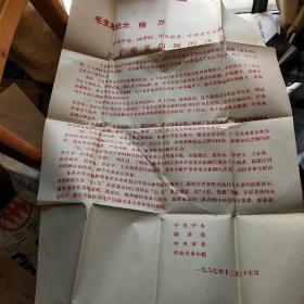 毛主席批示照办中共中央国务院中央军委中央文革小组关于宁夏问题的决定