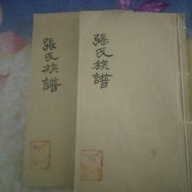民国湘潭地区张氏敬达祠族谱两册原本