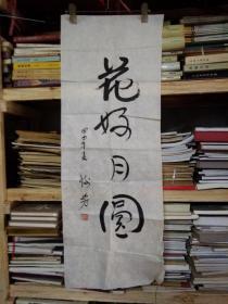 名人字画---谢芳(95/35cm)