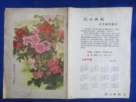 万紫千红 日历【河北画刊 1978年日历】