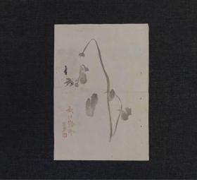 民国 木板水印 陈半丁 花卉 笺纸