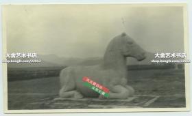 民国时期北京昌平十三陵神路上的石马石雕雕像老照片,14X8.3厘米