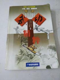 神州武功精粹:中国三大武功流派少林、武当、峨嵋功法