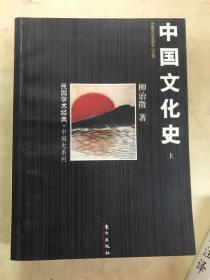 中国文化史   上册
