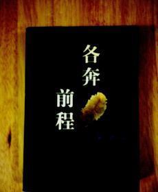 王慧敏著《各奔前程》 一版一印