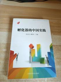 孵化器的中国实践。