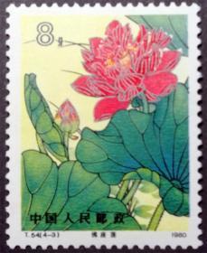 T54 荷花(4-3)全新上品无胶(T54-3邮票)T54邮票4-3