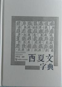 一手正版现货 西夏文字典 甘肃文化 贾常业