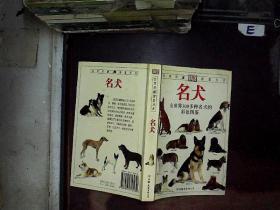 名犬:全世界300多种名犬的彩色图鉴....