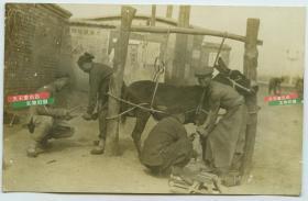 清末民国时期天津老照片,街头钉马掌匠人店铺 ,泛银。背面有天津柯达洗印商店戳记