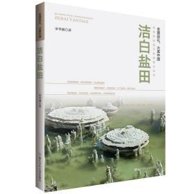 全景巡礼,大美中国:洁白盐田