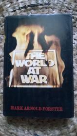 英文原版THE WORLD AT WAR