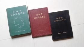 湖南省长株潭地名录:(长沙市地名录+ 株洲市地名录 + 湘潭市地名录)