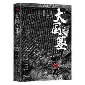 大国之基——中国乡村振兴诸问题(精装)