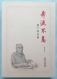《奔流不息——孙少颖文集》