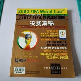 2002FIFA世界杯足球赛决赛集锦