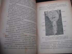 1964年文革前出版的----两本一套----厚册精装---【【家畜的繁殖】】----稀少