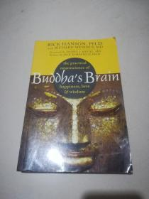Buddha's Brain:The Practical Neuroscience of Happiness, Love, and Wisdom