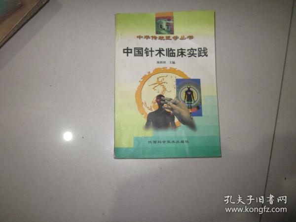 中国针术临床实践