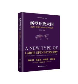 新型开放大国:共建开放型世界经济的中国选择