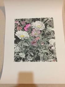 钢笔画 马国斌钢笔画 花卉
