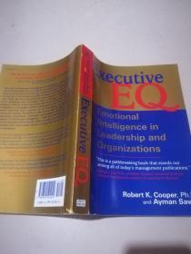 Executive Eq: Emotional Intelligence in Leadership and Organizations 英文原版