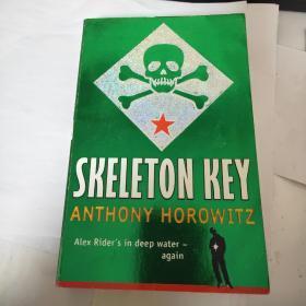 Alex Rider: Skeleton Key【幻界3:万能钥匙,安东尼▪赫洛维兹,英文原版】作者 :  Anthony Horowitz出版社 :  Walker Books出版时间 :  2010装帧 :  平装