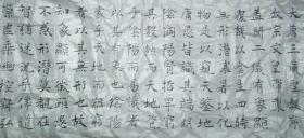 管峻小楷书法(绢纸习作)