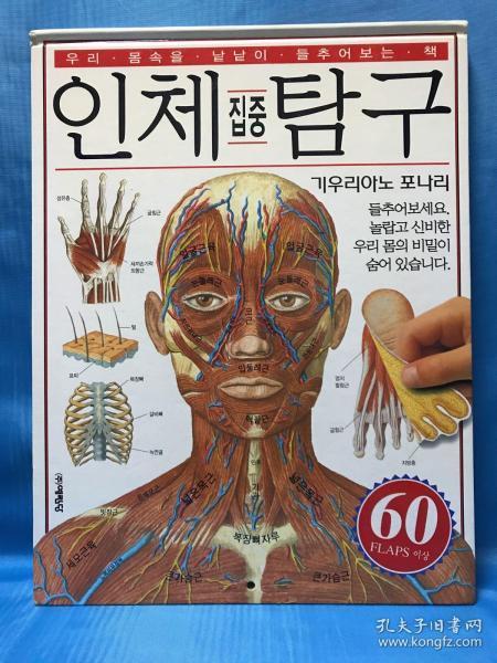 인체탐구 人体探究