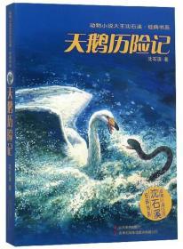 天鹅历险记/动物小说大王沈石溪经典书系