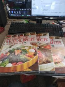 家庭实用菜谱大全(上、中、下)