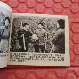 许茂和他的女儿们(电影版)