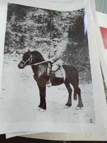 老照片(贺龙骑马照