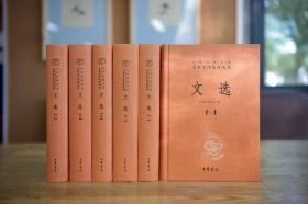 文选(中华经典名著全本全注全译·全6册)