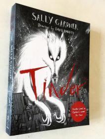 Tinder by Sally Gardner  大衛·羅伯茨·廷德的作品  英文原版