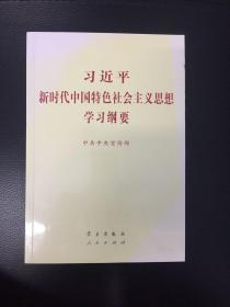 习近平新时代中国特色主义思想学习纲要(正版假一罚百!一版二印!)封面微小变色瑕疵!同品全网最低价!