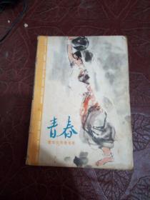 青春1980年第11期【青年女作者专号】