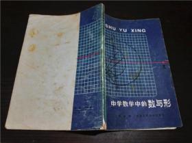 中学数学中的数与形 王占聪著  安徽科学技术出版社 1981年一版一印