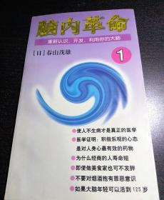 脑内革命 第一卷:重新认识、开发、利用你的大脑