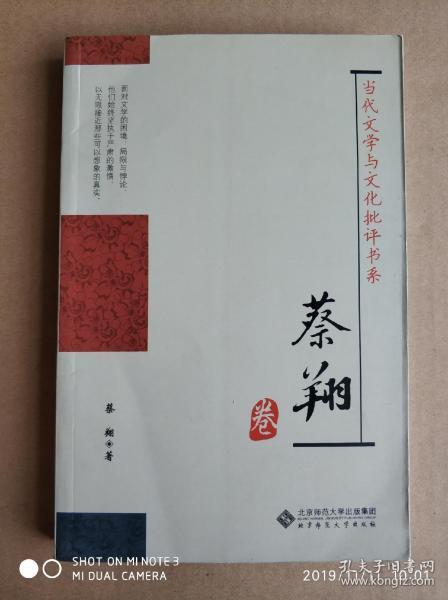 当代文学与文化批评书系:蔡翔卷