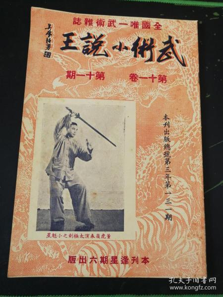 武术杂志:武术小说王  第十一卷 第十一期