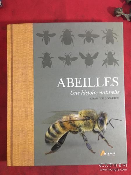 法语版蜜蜂的自然历史 Abeilles, une histoire naturelle